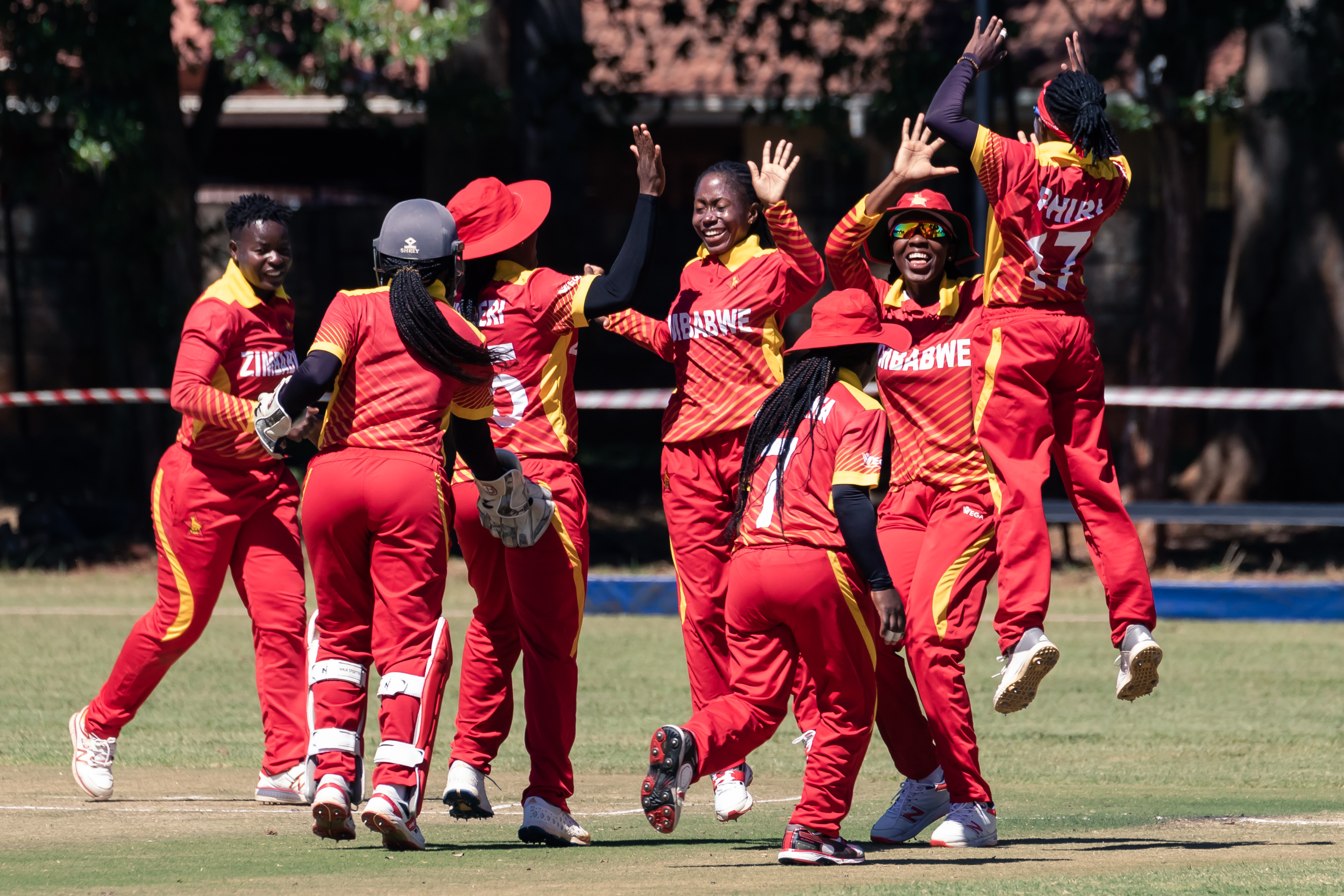 Zimbabwe Victory Over Australian Team In The T20 World Cup