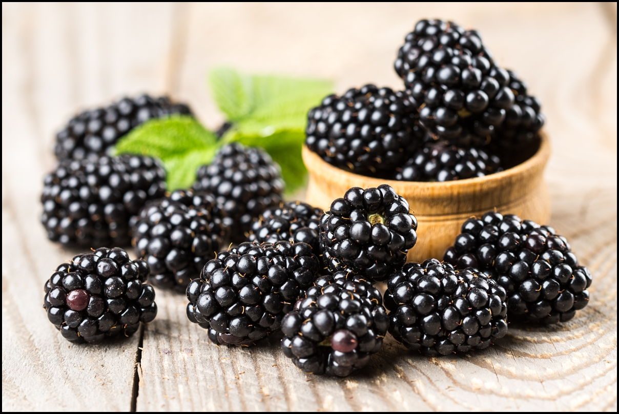Blackberries_Foods low carb diet