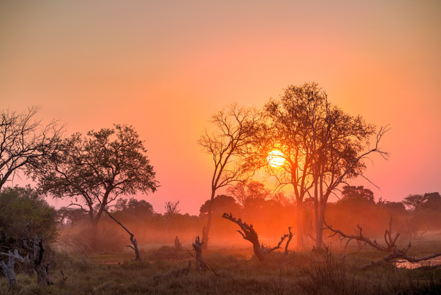 botswana-travel-photosv1