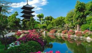 kyoto-japan-travel-photos