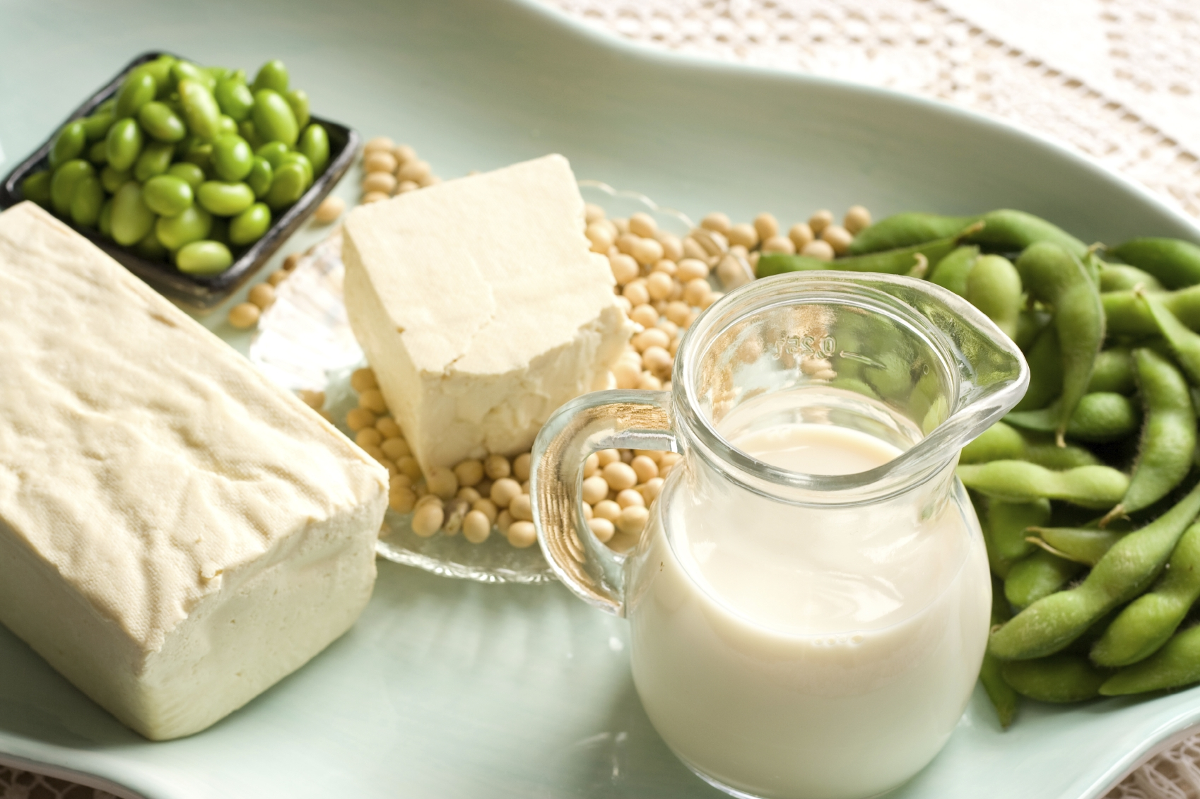 Soy Products_Foods
