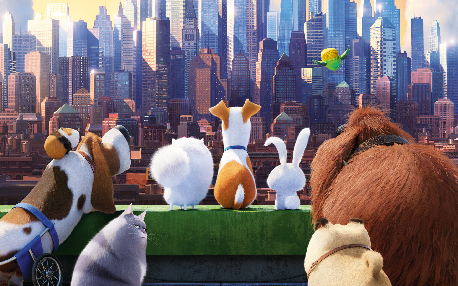 the-secret-life-of-pets_animation-movies