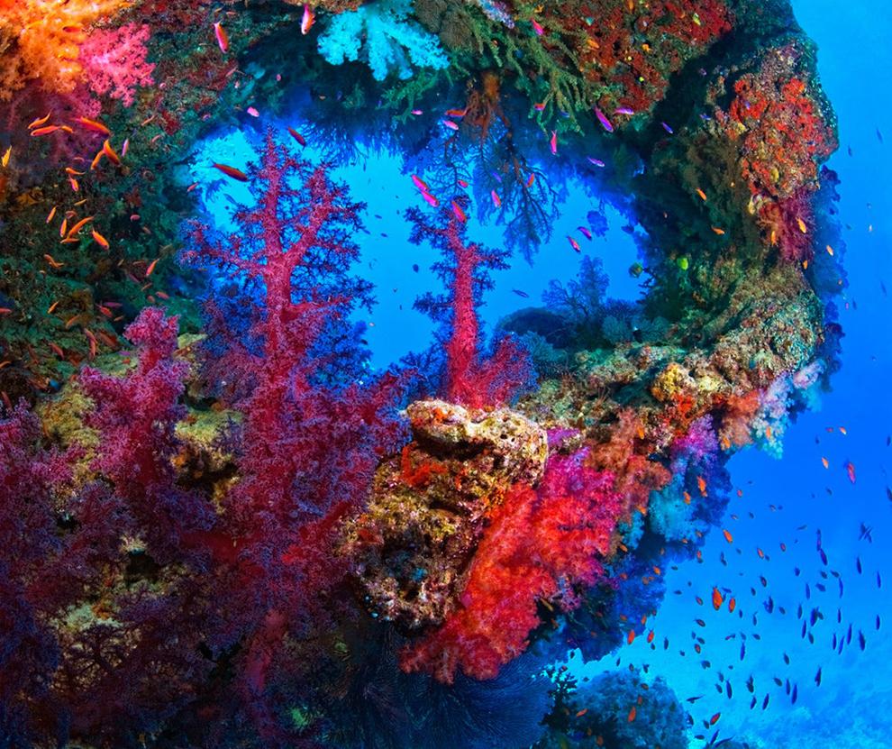 underwater-photos_v1