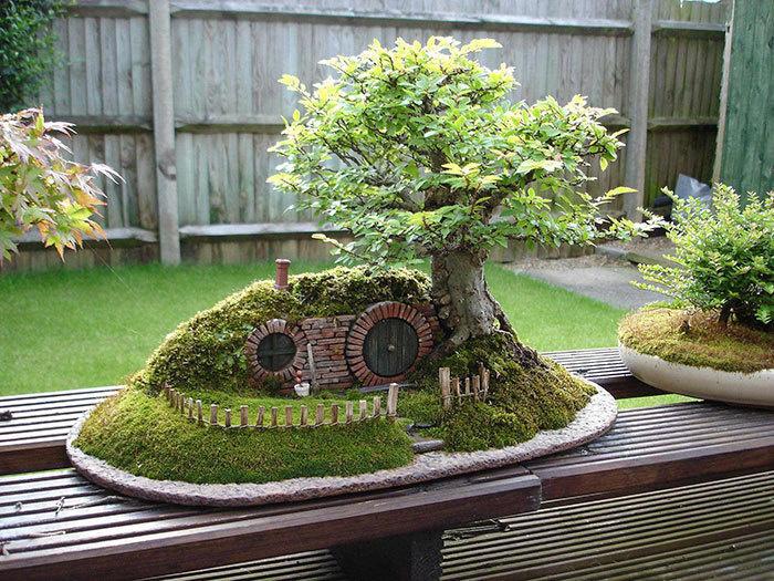 bonsai-trees_v1