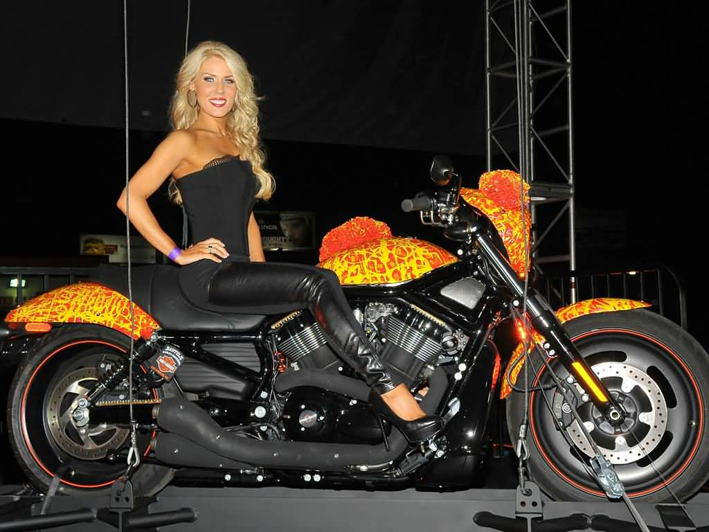 harley-davidson-cosmic-starship-1500000_expensive-motorcycles
