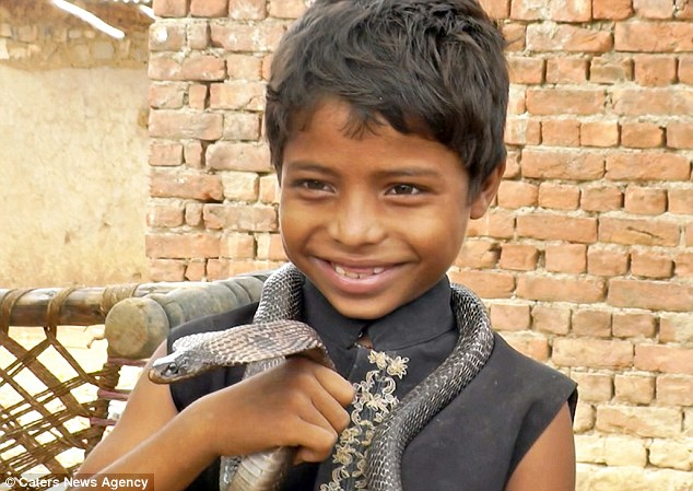 Only In India! Indian Village Children Taught To Be King Cobras Snake