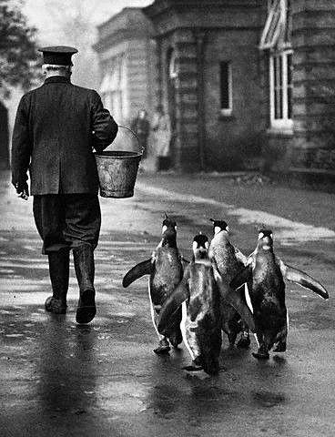 old-london-vintage-photos_v17