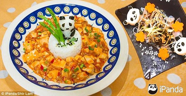 pandas-foodies-v6