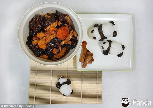 pandas-foodies-v7