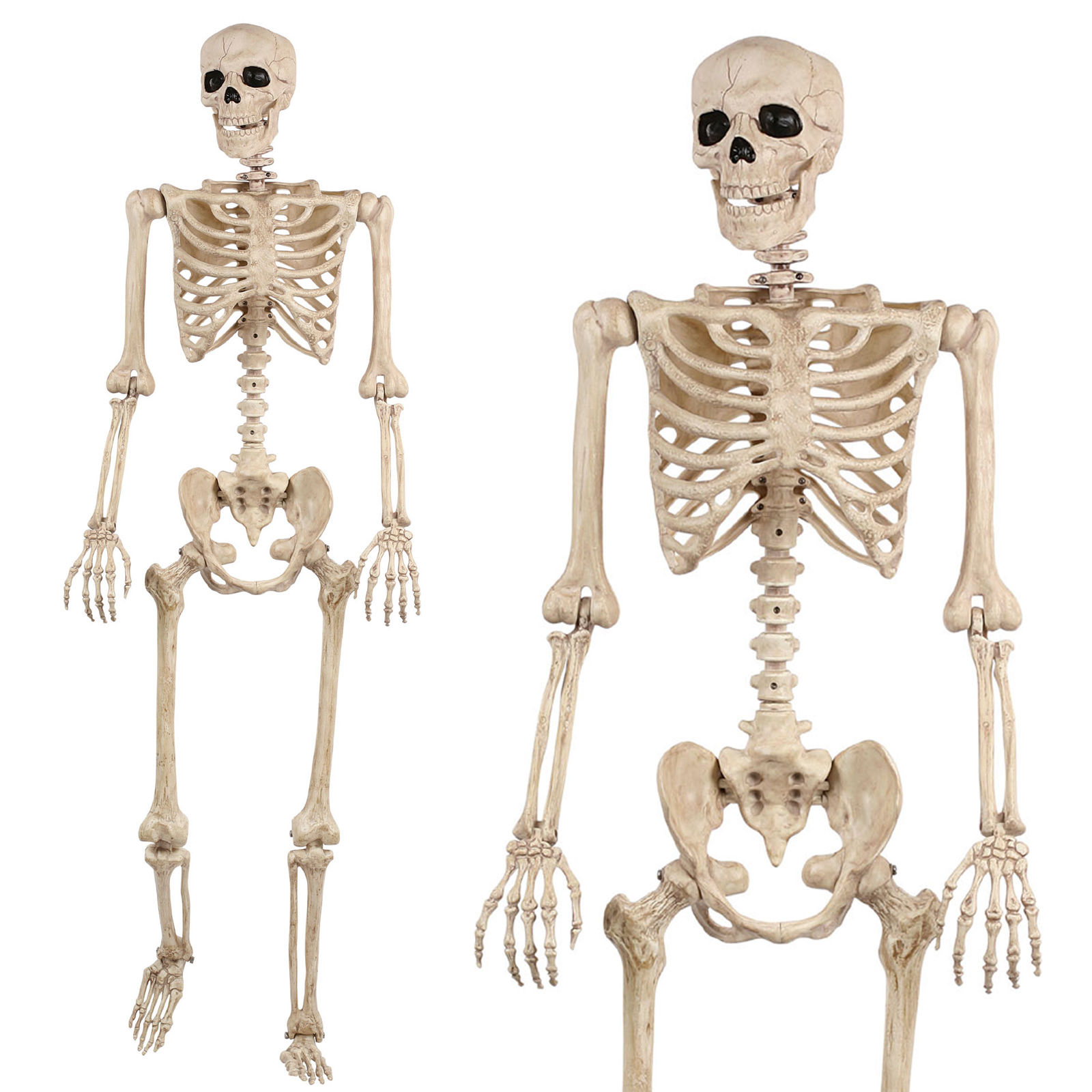 posable-life-size-skeleton_halloween-gifts