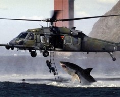 shark-vs-helicopter_v1