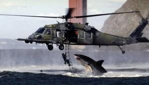 shark-vs-helicopter_v1