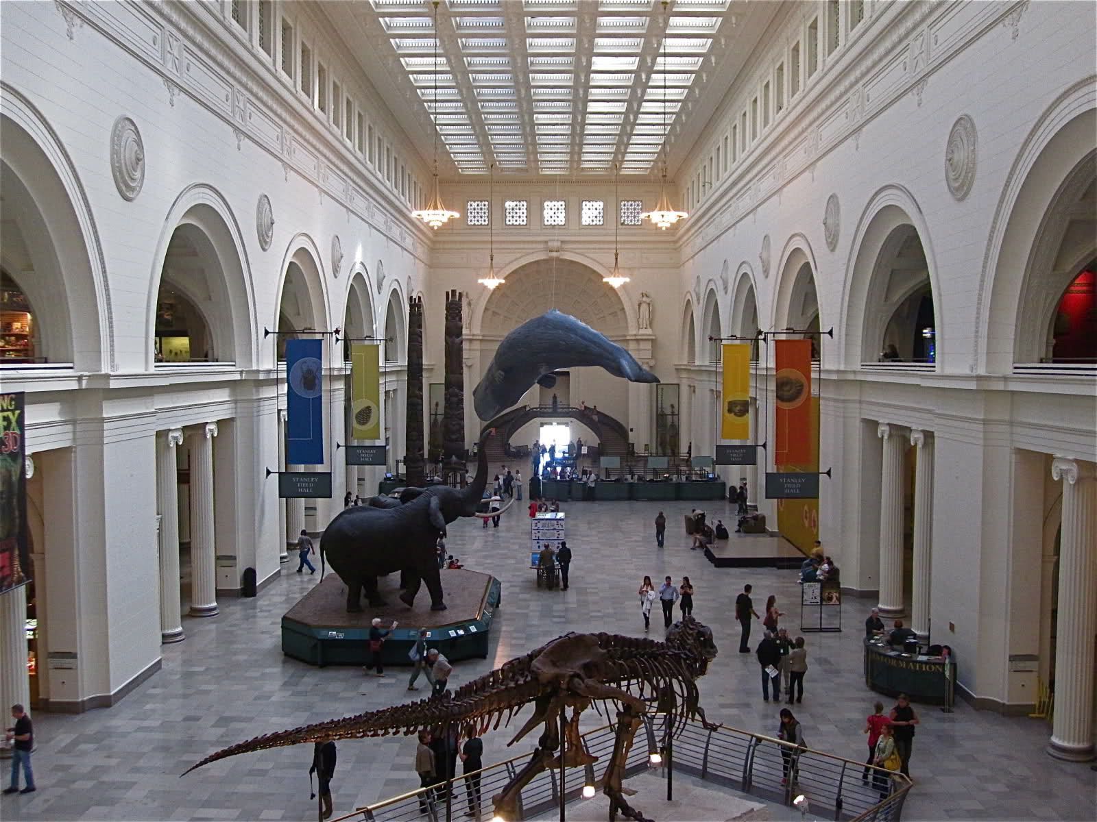 the-field-museum_museums