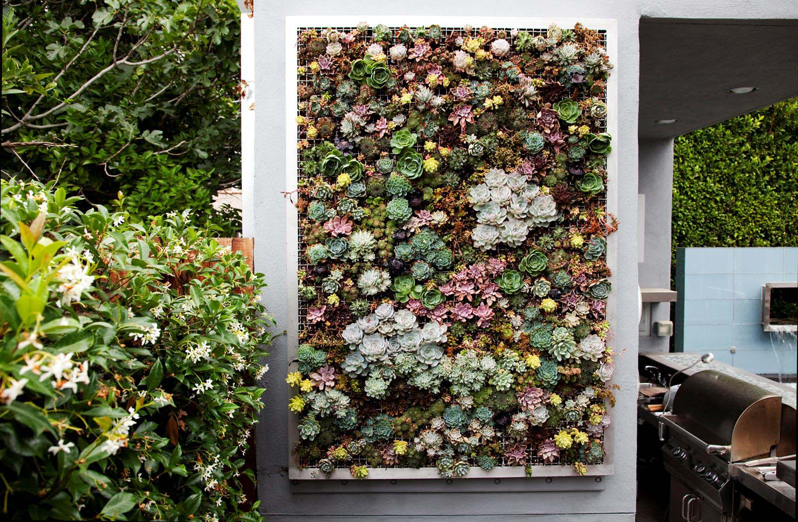 vertical-succulent-garden_home-decor-gifts