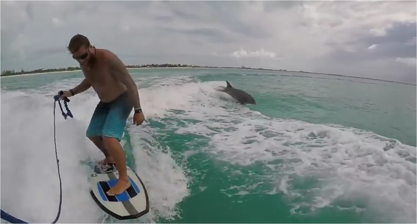 How Cool Was That? This Guy Has The Most Awesome Wakesurfing With A Dolphin