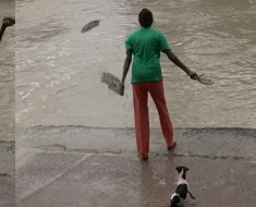 woman-sandal-scare-huge-crocodile