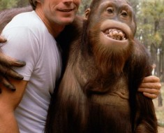 clint-eastwood-and-manis-the-orangutan-1