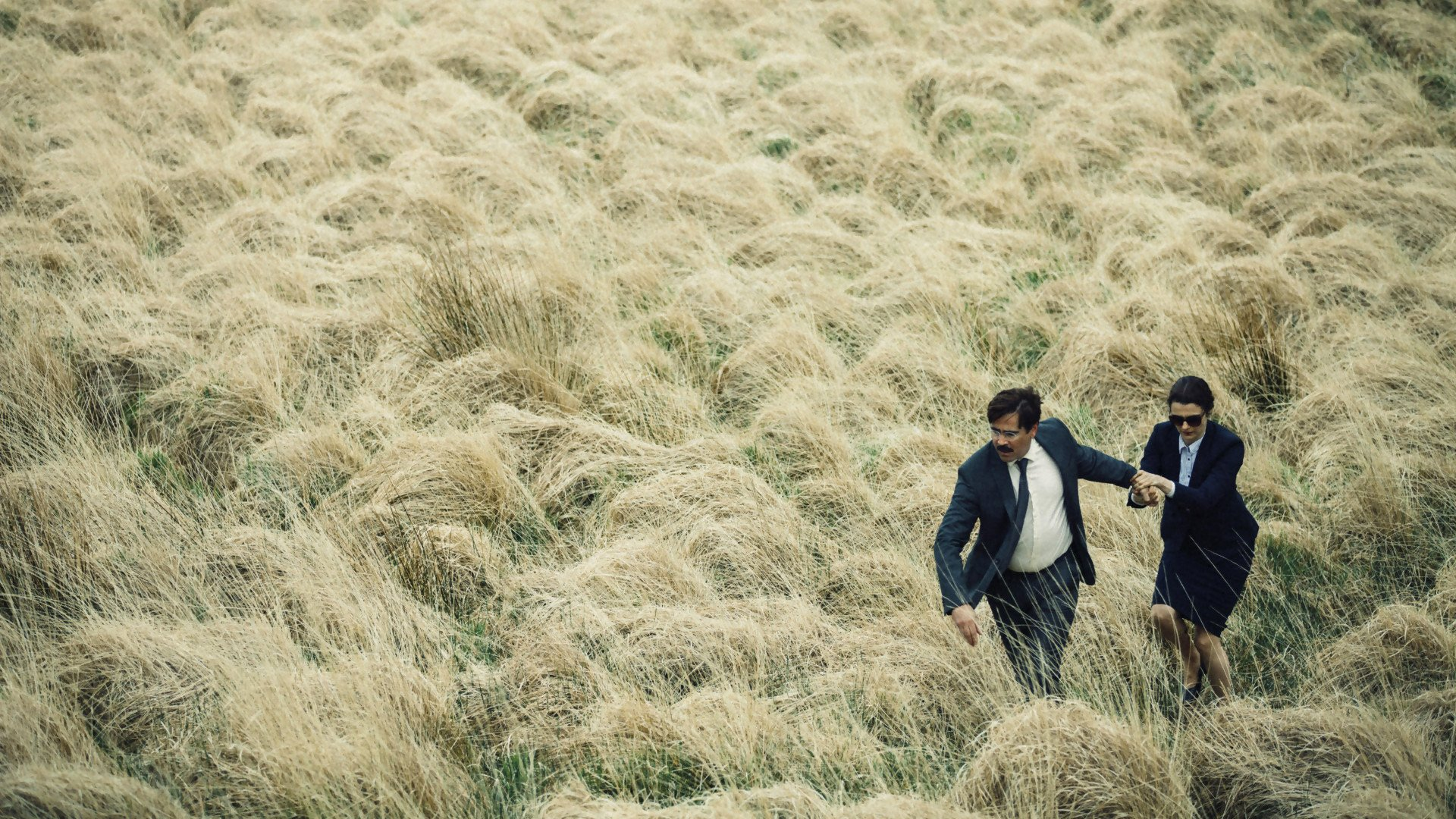 the-lobster-romantic-movie