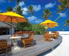 Amazing Resorts