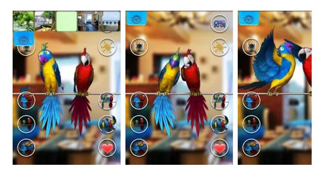 Talking Parrot stress buster funny app