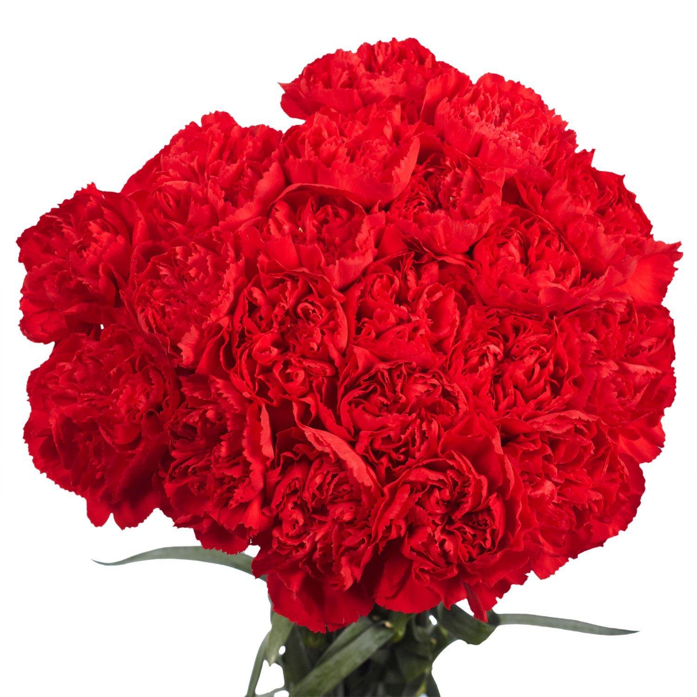 valentine's day-gifts-8