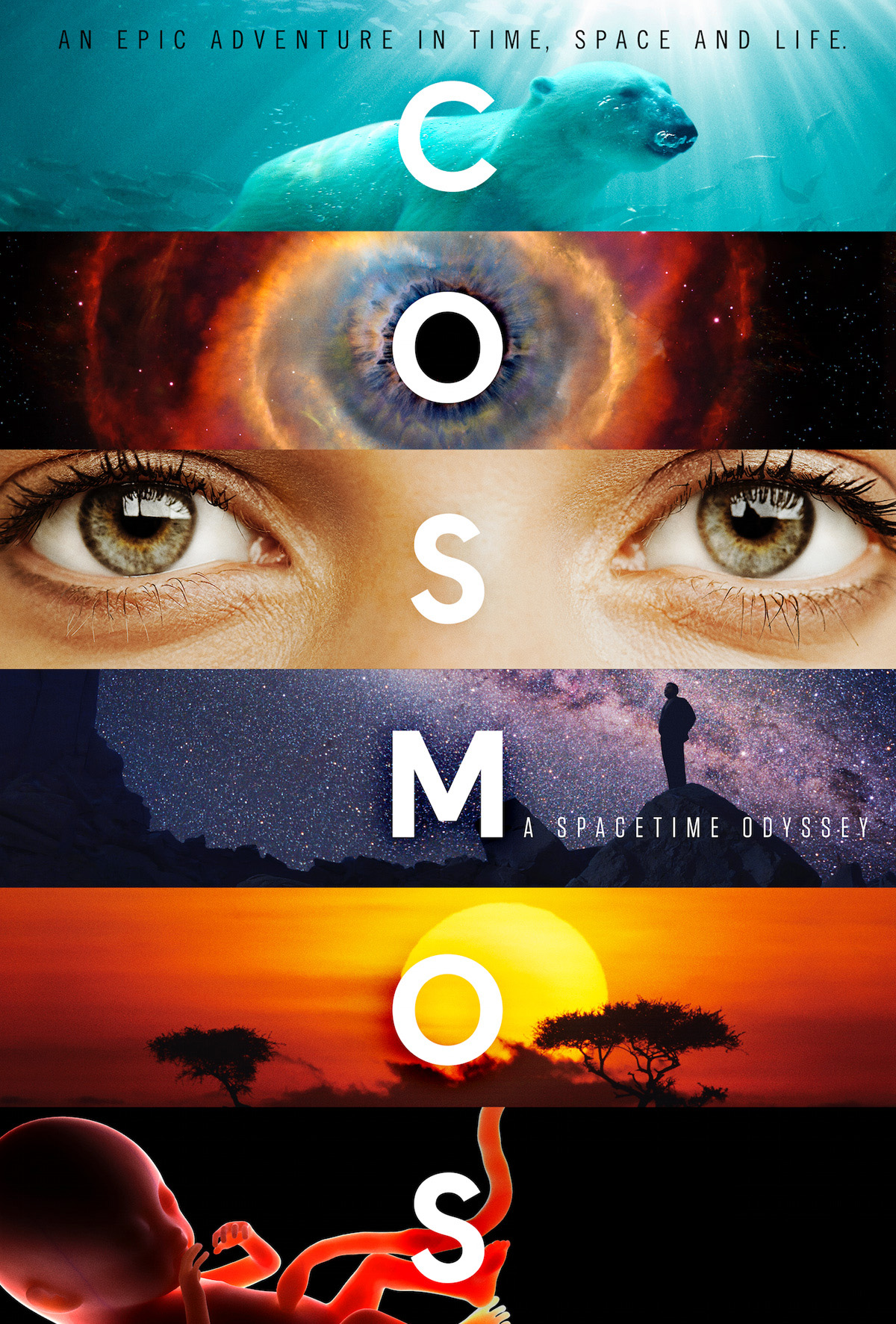 Cosmos A Spacetime Odyssey (2014)