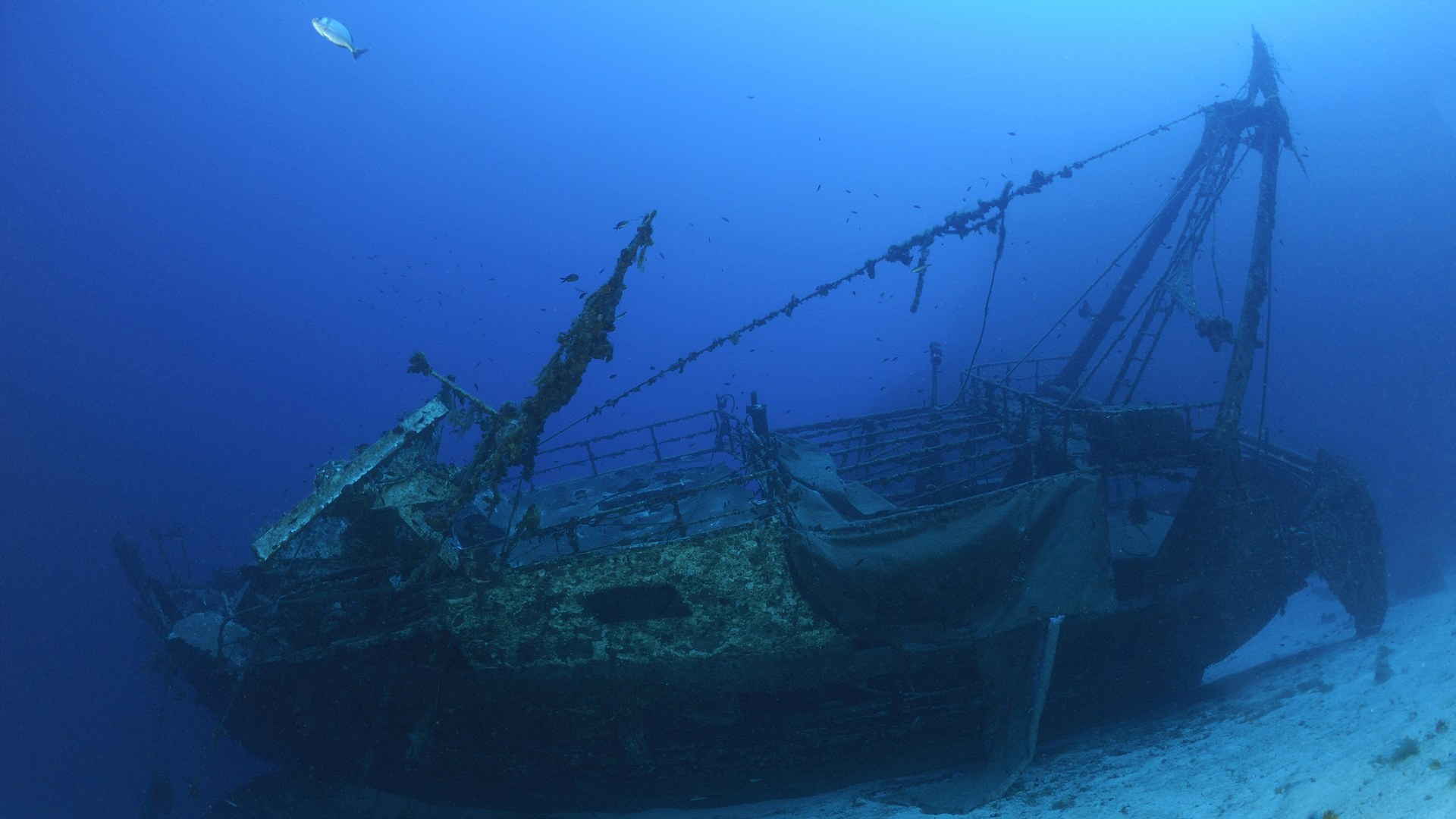 Vassilios Wreck, Vis, Adriatic Sea, Croatia