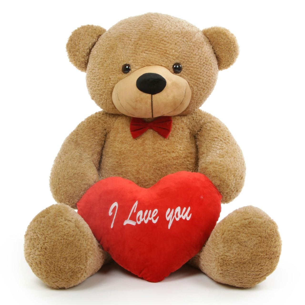 Gentleness With Cute Teddy Bears