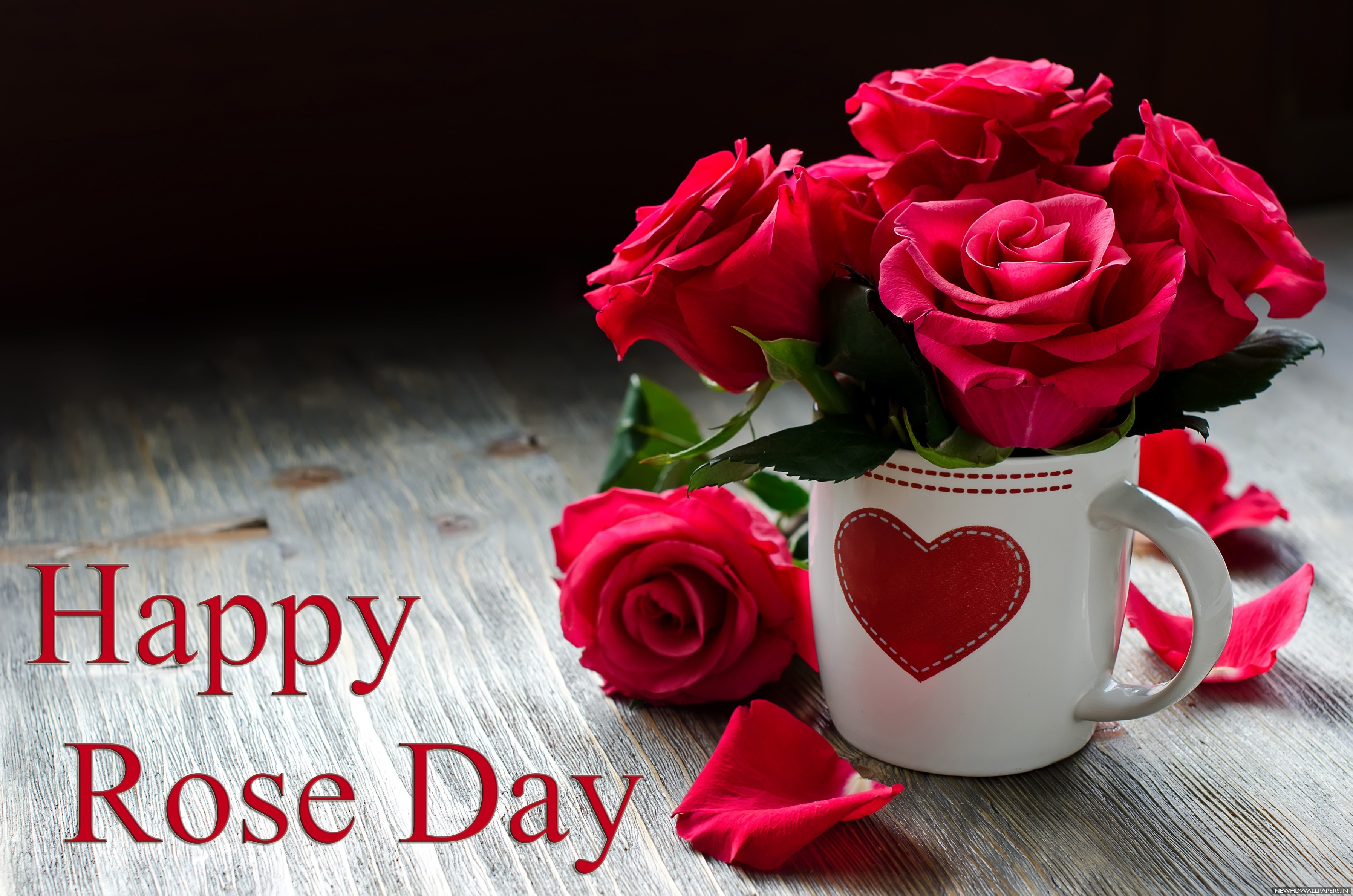 Rose Day-days of love