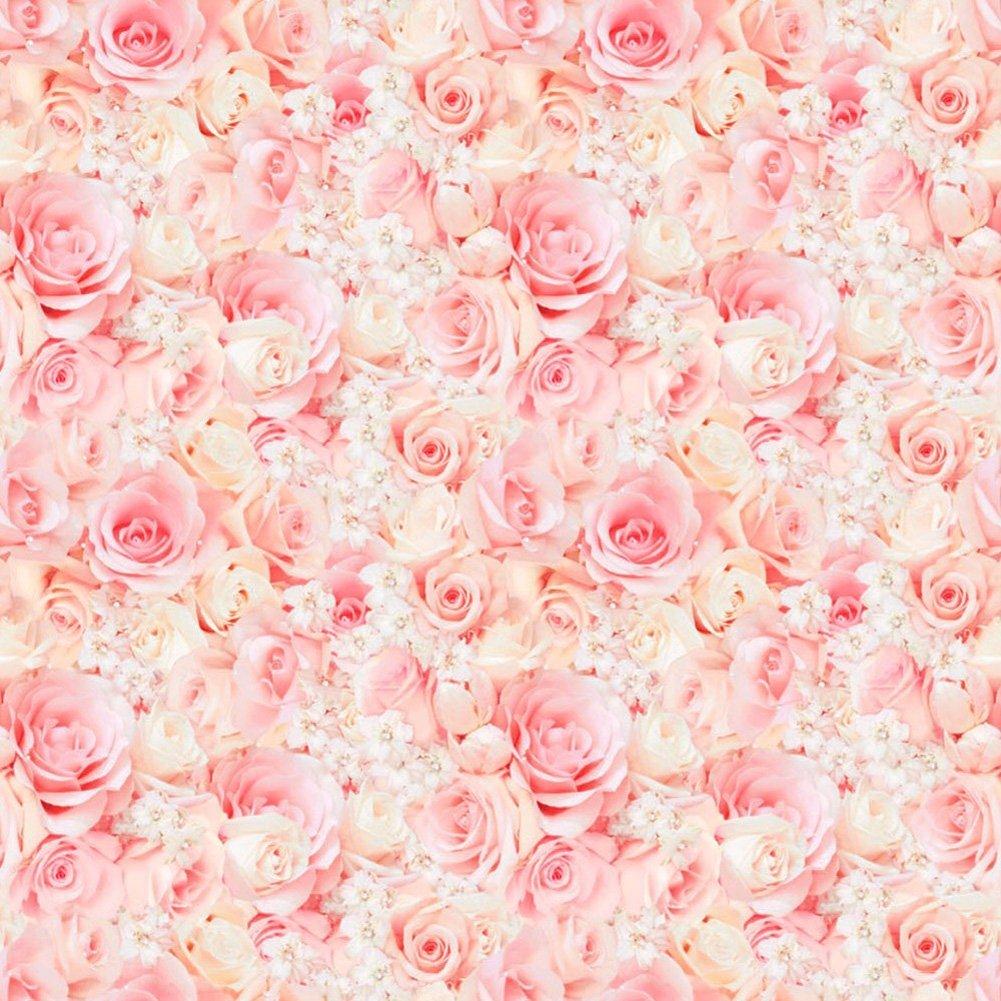 Rose day -Gifts -V12