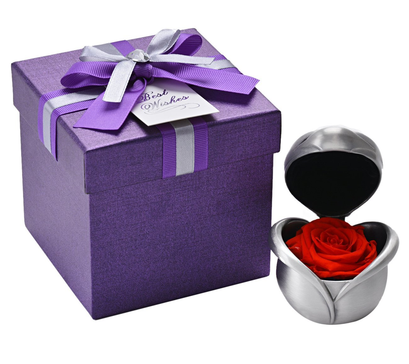 Rose day -Gifts -V15
