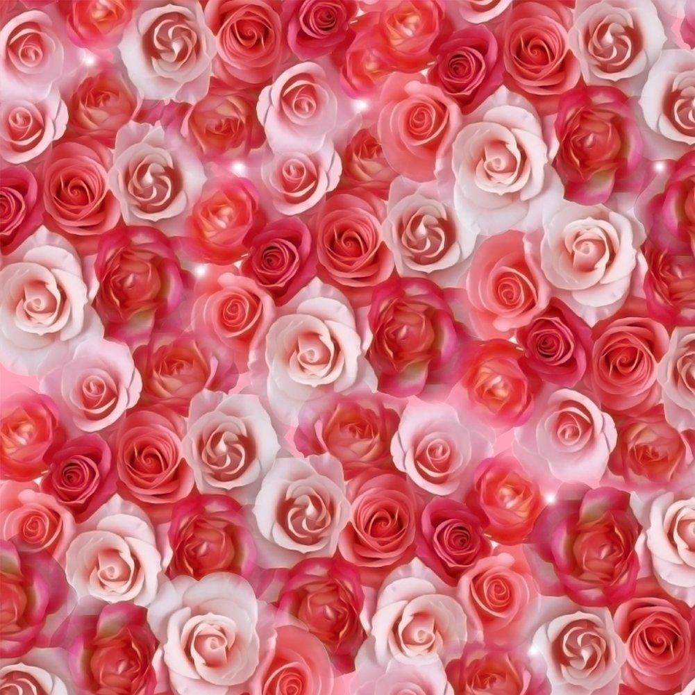 Rose day -Gifts -V21