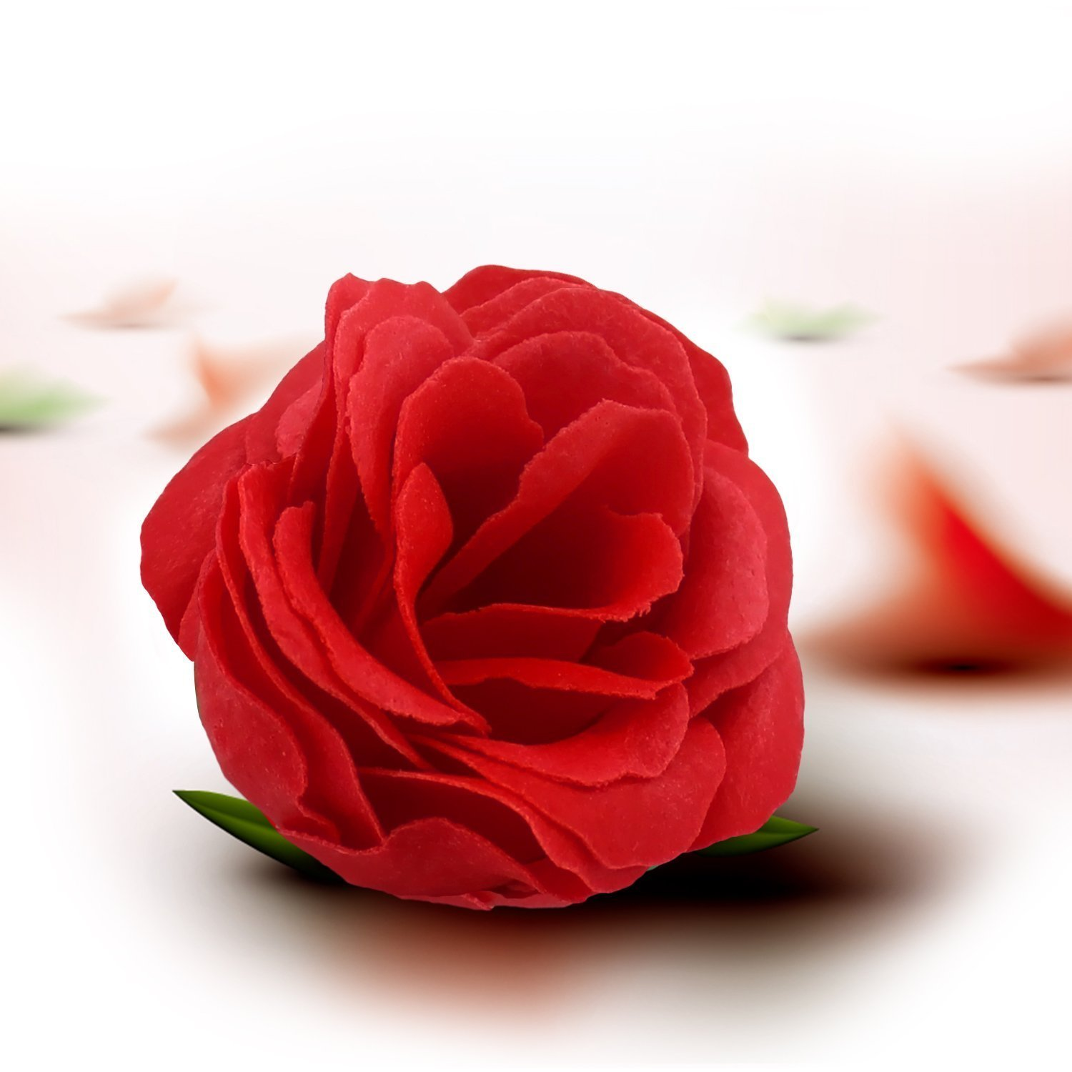 Rose day -Gifts -V7