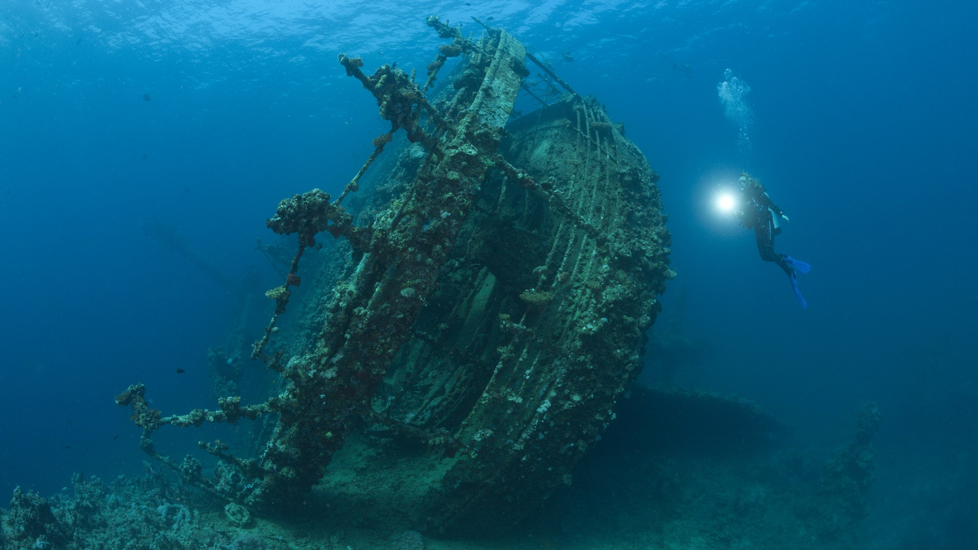 Scuba Diver at Umbria Wreck, Wingate Reef, Red Sea, Sudan
