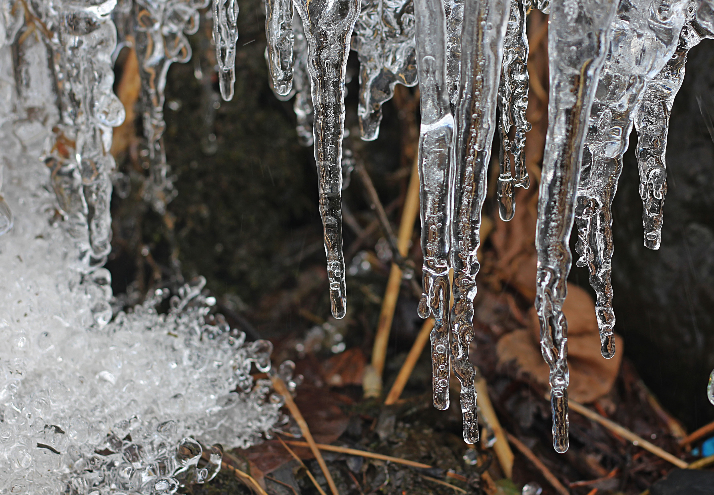 Icicles Formed Near The Flowing Stream On The Outskirts