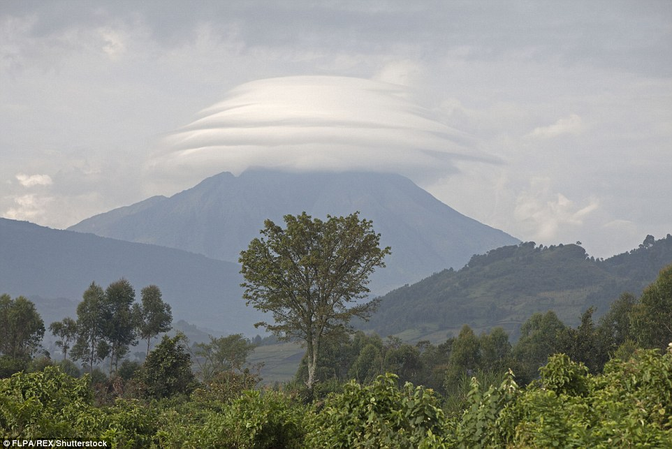 Virunga Mountains, Uganda