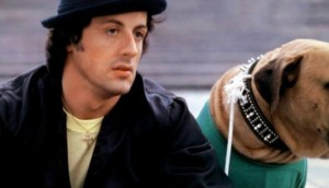 Sylvester Stallone's Tribute To His 'Rocky' Dog-Image