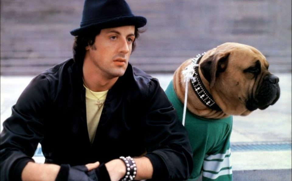 Sylvester Stallone's Tribute To His 'Rocky' Dog-stallone