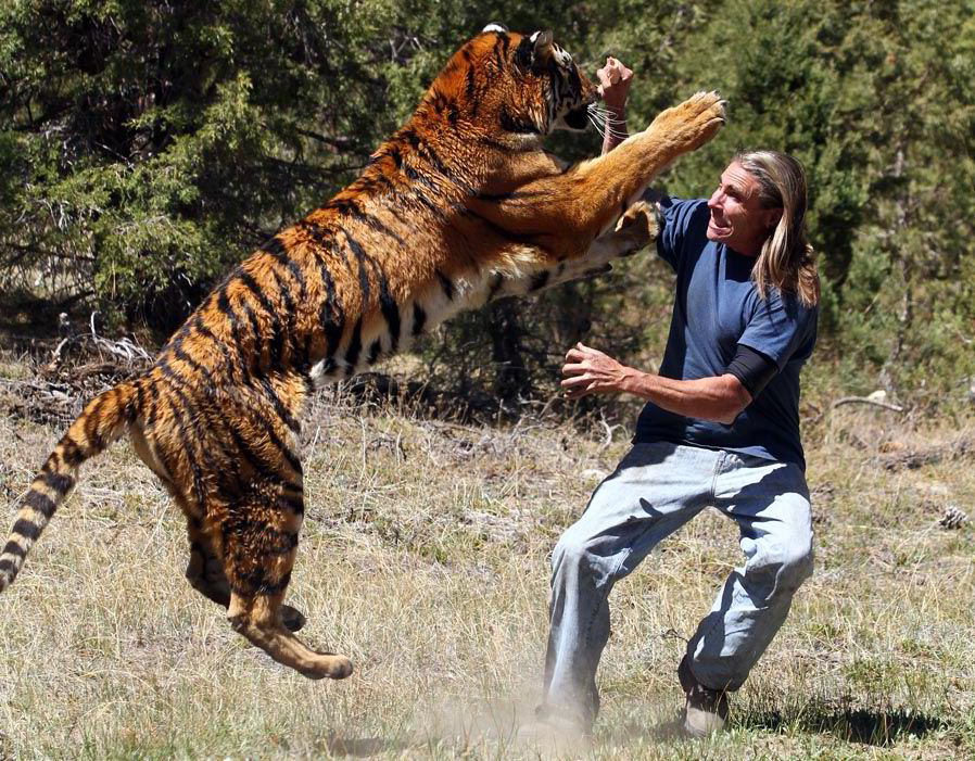 21 Shocking Animal Attacks On Human Caught On Camera