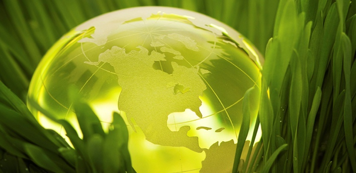12 Green Ideas To Celebrate World Environment Day 2017 At Your Home