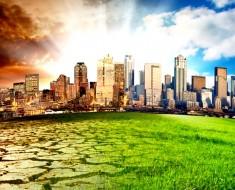World Environment Day 2017