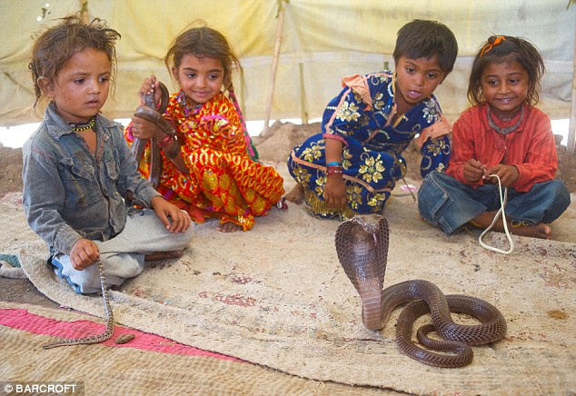 Vadi children play with a cobra