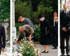 20th anniversary of Diana's death
