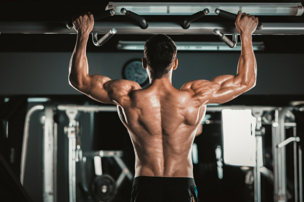 6 Muscle Building Tips For Beginners