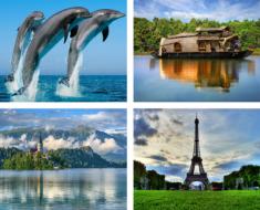 Amazing Travel Experiences