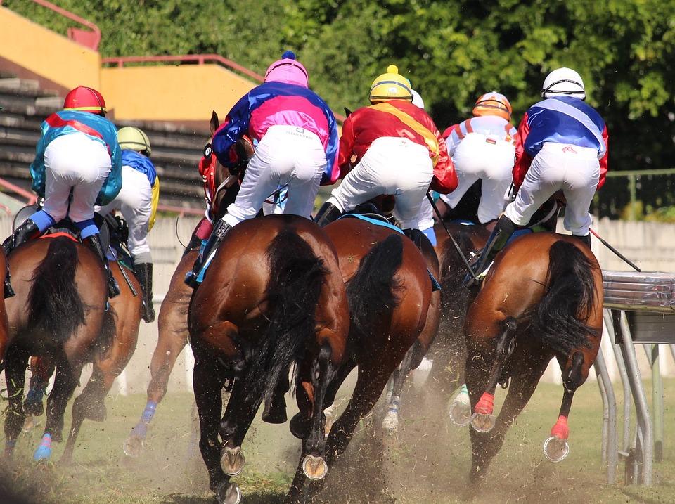 Horse Racing Basics 3