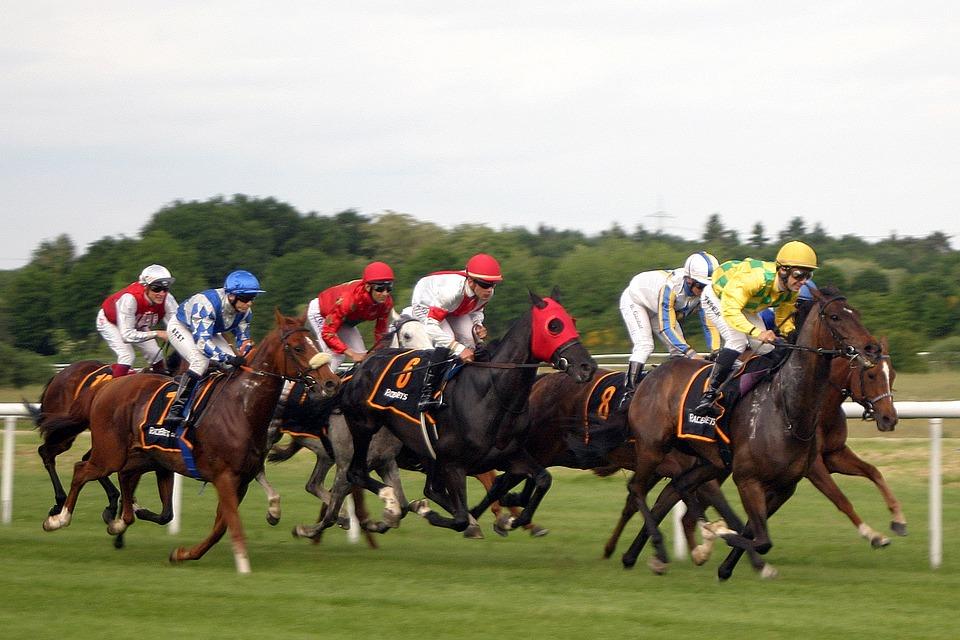 Horse Racing Basics 9