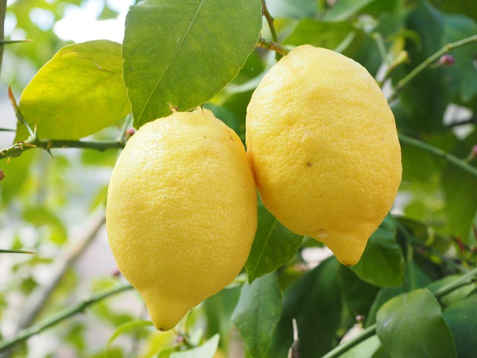 Two lemons