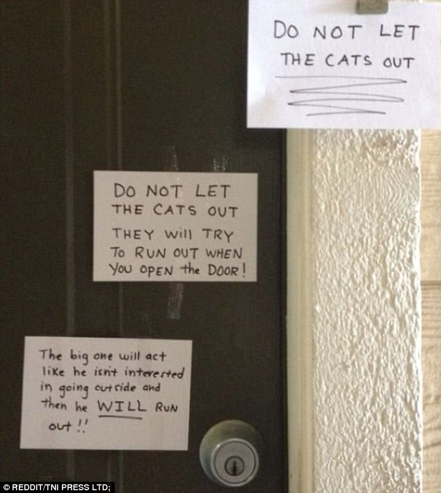 funny sticky notes