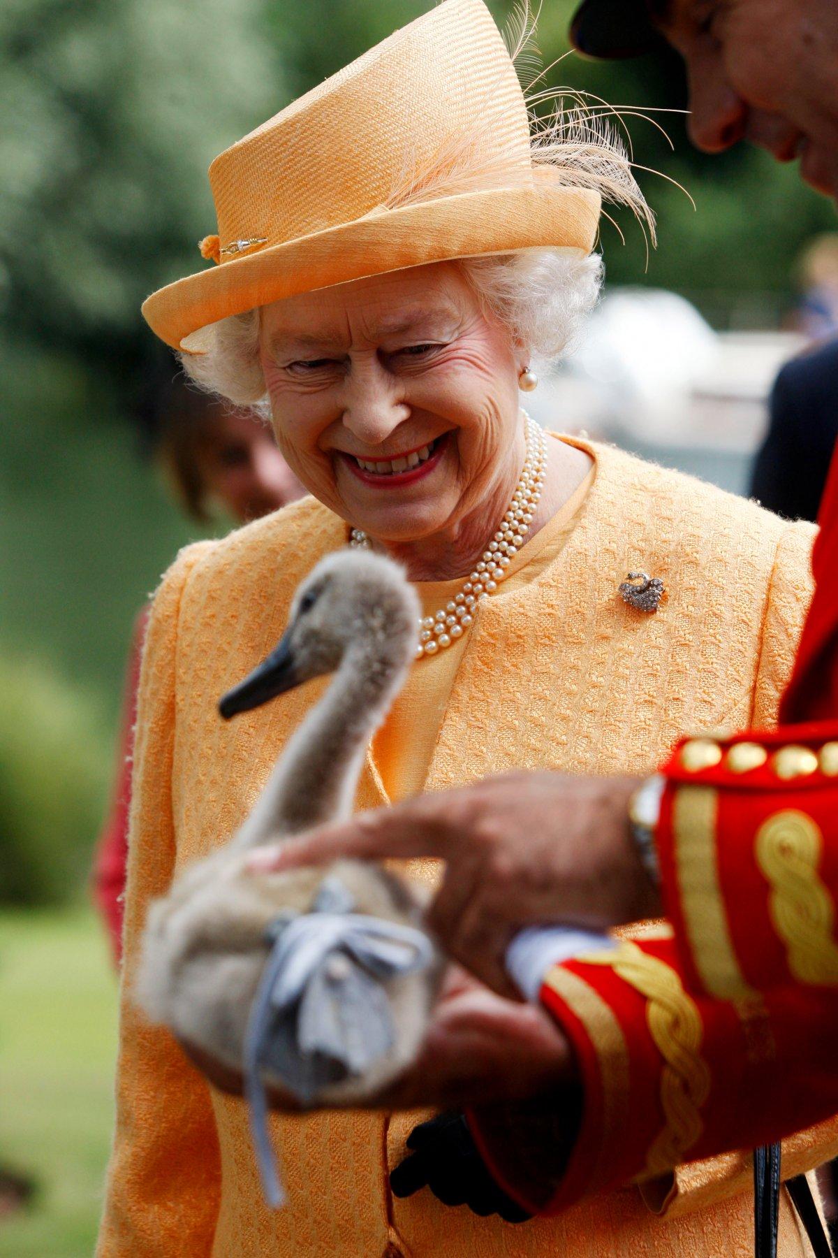 Queen Elizabeth II-V54
